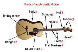 parts of a guitar guitar diagrams. Black Bedroom Furniture Sets. Home Design Ideas