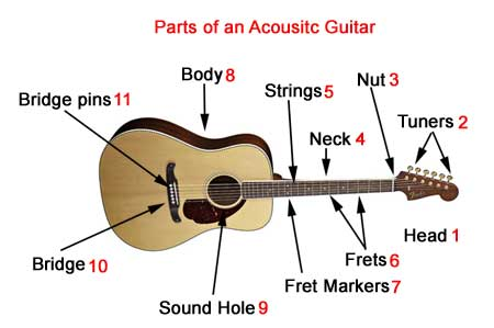 parts of an acoustic guitarparts of an acoustic guitar